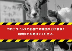 タケガワふれあい動物園 クラウドファンディング