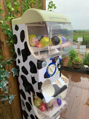 タケガワふれあい動物園 ガチャガチャ オリジナルペイント 牛柄 松阪市