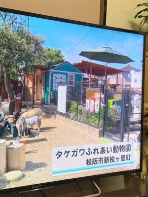 タケガワふれあい動物園 テレビ出演 三重テレビ 松阪市