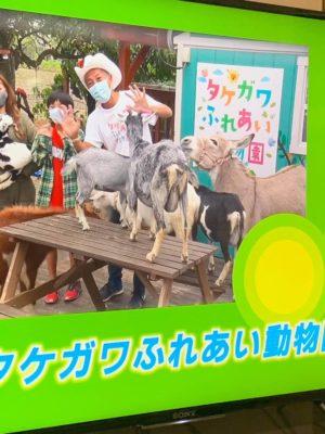 タケガワふれあい動物園 テレビ出演 松阪市