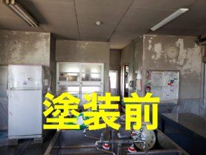 保育園給食室の塗装 タケガワ塗装 PROTECTON インテリアウォール VK-500